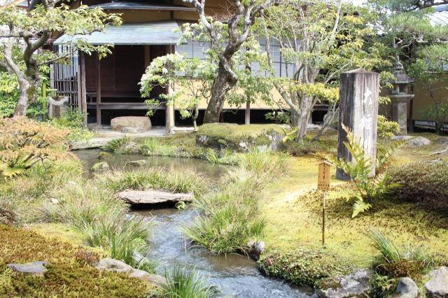 京都観光フォトブログ43 天龍寺7