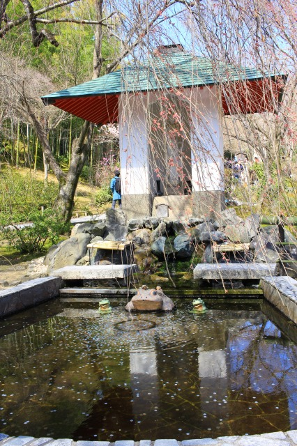 京都観光フォトブログ43 天龍寺17