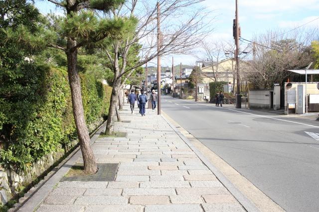 京都観光ブログ38|竹林の小径3