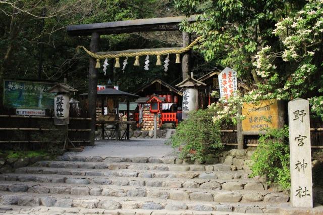 京都観光フォトブログ41|野宮神社1