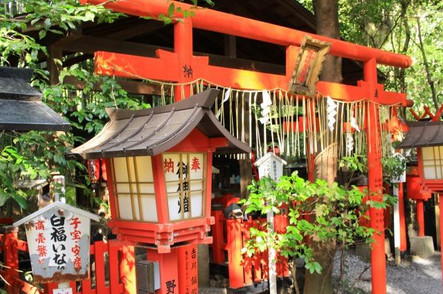 京都観光フォトブログ41|野宮神社4