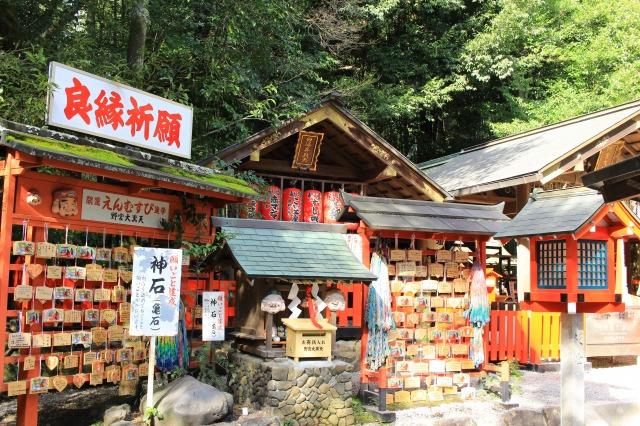京都観光フォトブログ41|野宮神社7