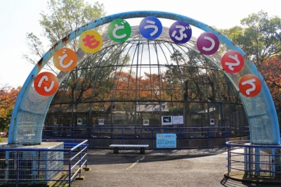 八幡市|さくら公園・こども動物園へ行ってきた!|無料で楽しめる動物園