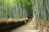 嵐山の観光スポット30ヶ所へ行ってきた!私のおすすめランキング