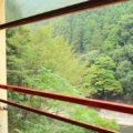 嵐山トロッコ列車へ乗った!|予約方法と切符の受取方法は?当日予約はできる?