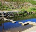 宝ヶ池公園(北園)で川遊びはできる?