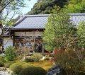 鈴虫寺へ行ってきた!|嵐山へ来たからにはこの説教を聞かねば!