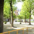 中京区|御射山公園へ行ってきた!|繁華街中心部にある大型遊具のある公園